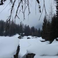 Alpe_Musella_01