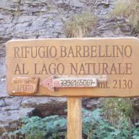 barbellino_03