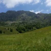 monte_alben_006