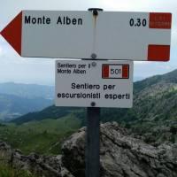 monte_alben_013