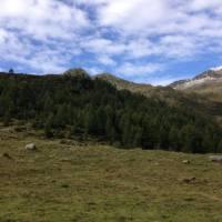 laghi_porcile_035