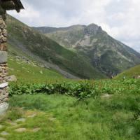 rifugio_tagliaferri_2018_067